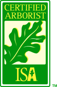 cert_arb-logo-195x300 Your Bonita Springs, Estero and Naples Tree Trimming and Tree Removal Experts